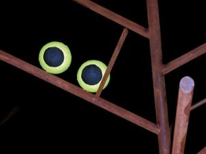 Canto notturno, particolare, h. cm 300