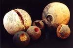Natura morta, 2002, terracotta e ferro cm 200x200